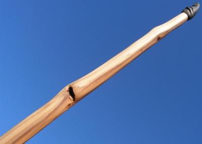 Yew longbow 45#@28'' If